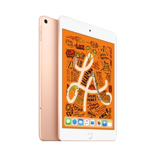 Apple iPad Mini (5th Generation 2019) (2) – OneThing_Gr_001